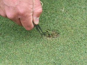 How To Properly Repair A Divot