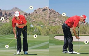 Anchor Ban Solution: Face-On Putting?